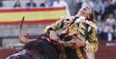 Cuando el Toro Gana.