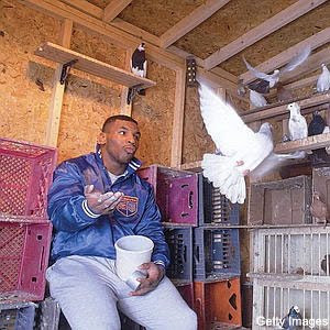 Tyson y su lado animal.