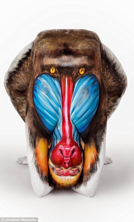 Y? Mono o humano pintado?
