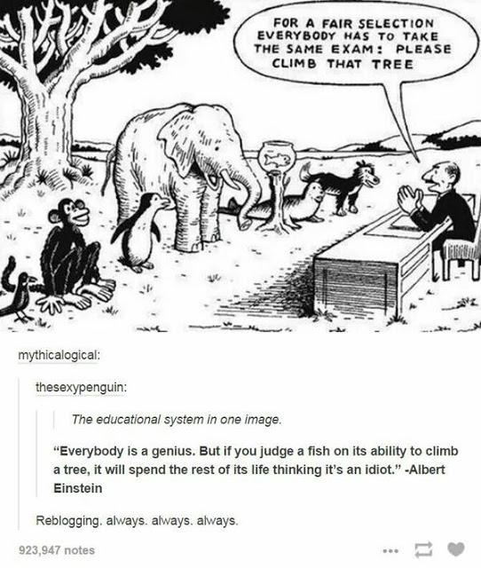 Sistemas educativos