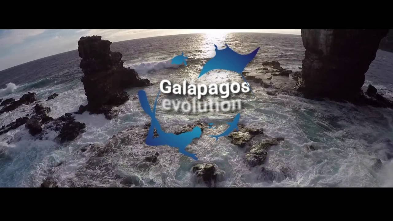 Galapagos evolution (trailer)