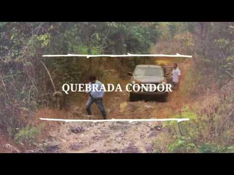 «Iniciativa Salvaje de Guayaquil»